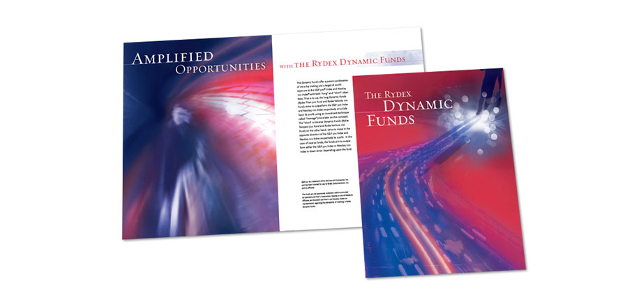Dynamic Funds Brochure